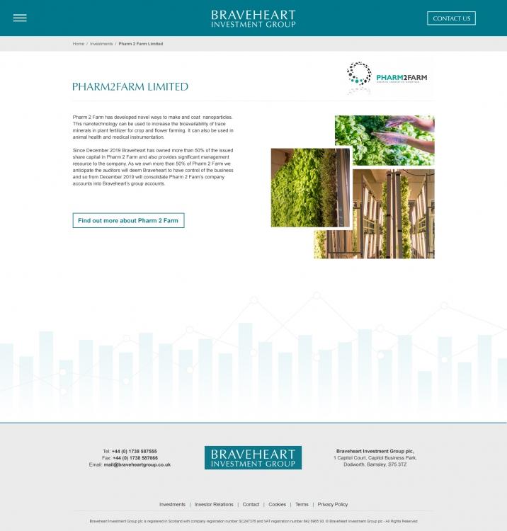BHG-Investment-Individual-Concept-P2F-2.51