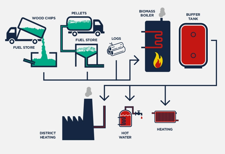 how-biomass-works