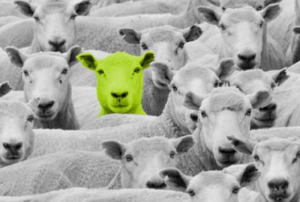Green Sheep LimeGreen Marketing